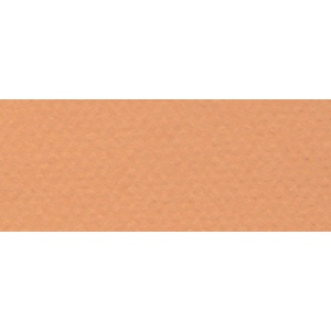 "Canson® Mi-Teintes® 19"" x 25"" Pastel Sheet Pack Buff: Orange, Sheet, 19"" x 25"", Rough, (model C100511240), price per sheet"