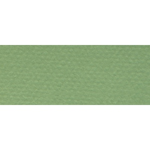 "Canson® Mi-Teintes® 19"" x 25"" Pastel Sheet Pack Green: Green, Sheet, 19"" x 25"", Rough, (model C100511250), price per sheet"