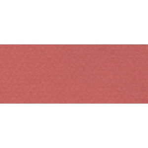 "Canson® Mi-Teintes® 8.5"" x 11"" Pastel Sheet Pad Red Earth: Red/Pink, Sheet, 8 1/2"" x 11"", Rough, (model C100511286), price per sheet"