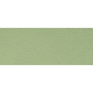 "Canson® Mi-Teintes® 8.5"" x 11"" Pastel Sheet Pad Light Green: Green, Sheet, 8 1/2"" x 11"", Rough, (model C100511311), price per sheet"