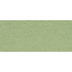 "Canson® Mi-Teintes® 16"" x 20"" Art Board Light Green: Green, Sheet, 16"" x 20"", (model C100510146), price per sheet"