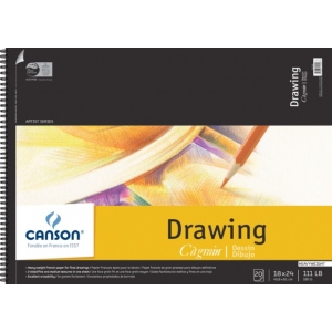 "Canson® C R Grain® Artist Series 18"" x 24"" Drawing Sheet Pad: Wire Bound, White/Ivory, Pad, 20 Sheets, 18"" x 24"", Fine, Medium, (model C100510889), price per 20 Sheets pad"