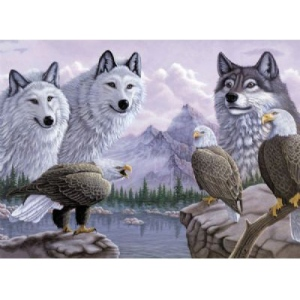 "Royal & Langnickel® Painting by Numbers™ 12 3/4 x 15 3/4 Adult Set Wolves & Eagles: 12 3/4"" x 15 3/4"", (model PAL30), price per set"