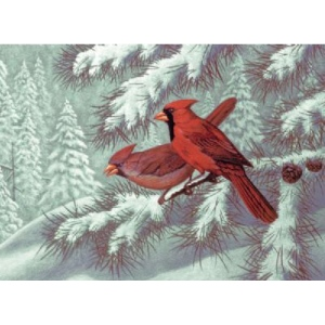 "Royal & Langnickel® Painting by Numbers™ 12 3/4 x 15 3/4 Adult Set Cardinals: 12 3/4"" x 15 3/4"", (model PAL32), price per set"