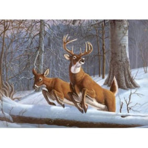 "Royal & Langnickel® Painting by Numbers™ 12 3/4 x 15 3/4 Adult Set White Tails: 12 3/4"" x 15 3/4"", (model PAL34), price per set"