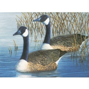 "Royal & Langnickel® Painting by Numbers™ 12 3/4 x 15 3/4 Adult Set Geese: 12 3/4"" x 15 3/4"", (model PAL35), price per set"