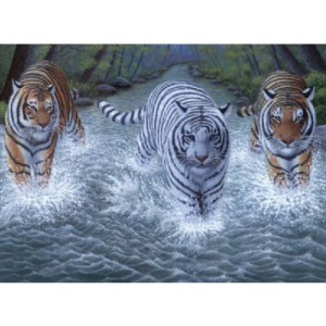 "Royal & Langnickel® Painting by Numbers™ 11 1/4 x 15 3/8 Junior Large Set Three Tigers: 11 1/4"" x 15 3/8"""