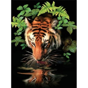 "Royal & Langnickel® Painting by Numbers™ 8 3/4 x 11 3/8 Junior Small Set Thirsty Tiger: 8 3/4"" x 11 3/8"", (model PJS57), price per set"