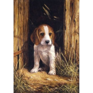 "Royal & Langnickel® Painting by Numbers™ 8 3/4 x 11 3/8 Junior Small Set Beagle Puppy: 8 3/4"" x 11 3/8"", (model PJS58), price per set"