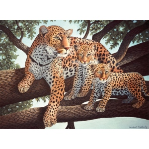 "Royal & Langnickel® Painting by Numbers™ 11 1/4 x 15 3/8 Junior Large Set African Leopard & Cubs: 11 1/4"" x 15 3/8"""