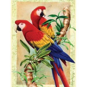 "Royal & Langnickel® Painting by Numbers™ 8 3/4 x 11 3/8 Junior Small Set Bamboo Parrot: 8 3/4"" x 11 3/8"", (model PJS38), price per set"