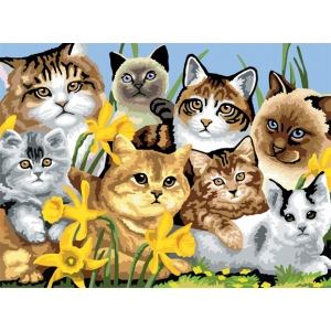 "Royal & Langnickel® Painting by Numbers™ 11 1/4 x 15 3/8 Junior Large Set Cats Montage: 11 1/4"" x 15 3/8"""