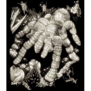 "Royal & Langnickel® Engraving Art Set Glow In The Dark Foil Tarantula: 8"" x 10"", Glow in the Dark, (model GLO14), price per set"