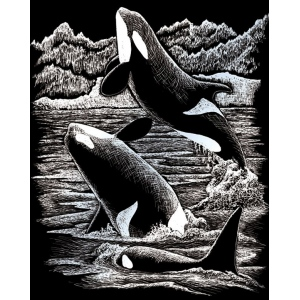 "Royal & Langnickel® Engraving Art Set Silver Foil Orca Whales: 8"" x 10"", Metallic, (model SILF19), price per set"