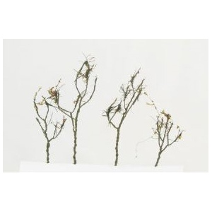 "Wee Scapes™ Architectural Model Dry Leaf Trees 24-Pack: Multi, Wire, 24-Pack, 1 1/2"" - 3"", Tree, (model WS00312), price per 24-Pack"