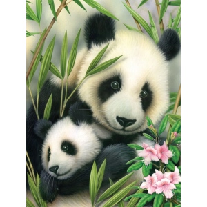"Royal & Langnickel® Painting by Numbers™ 8 3/4 x 11 3/8 Junior Small Set Panda & Baby: 8 3/4"" x 11 3/8"", (model PJS39), price per set"