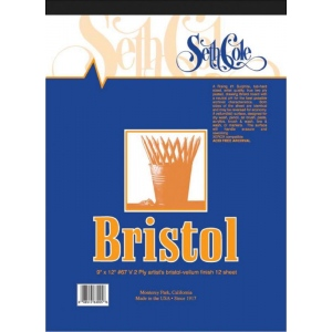 "Seth Cole 19 x 24 Vellum Finish Bristol Board Pad: Vellum, Pad, 12 Sheets, 19"" x 24"", 100 lb, (model SC67VC), price per 12 Sheets pad"