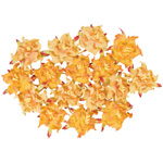 "Blue Hills Studio™ Irene's Garden™ Box O'Gardenias Dimensional Paper Flowers Marmalade: Orange, Paper, 2"", 3"", Dimensional, (model BHS107524), price per box"