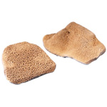 "Hydra® 3.5"" Elephant Ear Sponge: 4"", (model E5), price per each"