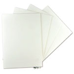 "Alvin® White On White Presentation Board 20 x 30: White/Ivory, Sheet, 25 Sheets, 20"" x 30"", Presentation Board"