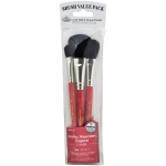 Royal & Langnickel® 9100 Series  Zip N' Close™ Red 4-Piece Brush Set 3: Short Handle, Camel, Mop, Acrylic, Tempera, Watercolor, (model RSET-9147), price per set