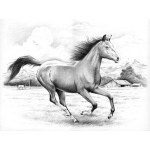 Reeves™ Large Sketching By Numbers Galloping Horses: Multi, Drawing