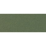 "Canson® Mi-Teintes® 8.5"" x 11"" Pastel Sheet Pad Ivy: Green, Sheet, 8 1/2"" x 11"", Rough, (model C100511307), price per sheet"