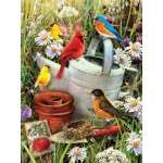 "Royal & Langnickel® Painting by Numbers™ 8 3/4 x 11 3/8 Junior Small Set Garden Birds: 8 3/4"" x 11 3/8"", (model PJS71), price per set"