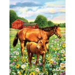 "Royal & Langnickel® Painting by Numbers™ 8 3/4 x 11 3/8 Junior Small Set Horses In Field: 8 3/4"" x 11 3/8"", (model PJS81), price per set"