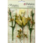 Petaloo - Calla Lilies & Berries  - Soft Yellow