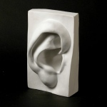 Natural Pigments Drawing Plaster Cast Ear