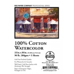 "Bee Paper® 100% Cotton Watercolor Sheets 22"" x 30"" 90lb: Sheet, 5 Sheets, 22"" x 30"", Watercolor, 90 lb"