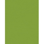 "My Colors Canvas 80 lb. Textured Cardstock Mint Julep 8.5 x 11: Green, Sheet, 25 Sheets, 8 1/2"" x 11"", Canvas, 80 lb, (model E055516), price per 25 Sheets"