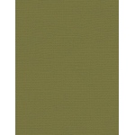 "My Colors Canvas 80 lb. Textured Cardstock Grasshopper 8.5 x 11: Green, Sheet, 25 Sheets, 8 1/2"" x 11"", Canvas, 80 lb, (model E055518), price per 25 Sheets"
