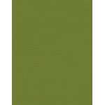 "My Colors Canvas 80 lb. Textured Cardstock Spanish Moss 8.5 x 11: Green, Sheet, 25 Sheets, 8 1/2"" x 11"", Canvas, 80 lb, (model E055519), price per 25 Sheets"