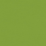"My Colors Canvas 80 lb. Textured Cardstock Mint Julep 12 x 12: Green, Sheet, 25 Sheets, 12"" x 12"", Canvas, 80 lb, (model T055516), price per 25 Sheets"
