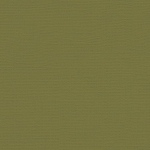 "My Colors Canvas 80 lb. Textured Cardstock Grasshopper 12 x 12: Green, Sheet, 25 Sheets, 12"" x 12"", Canvas, 80 lb, (model T055518), price per 25 Sheets"