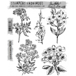 Stampers Anonymous - Tim Holtz - Illustrated Garden Stamp Set