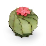 Sizzix - Thinlits Die Set 2 Pack - Barrel Cactus - 3-D by Lynda Kanase