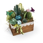 Sizzix - Thinlits Die Set 6 Pack - Succulents - 2-D & 3-D by Lynda Kanase