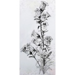 Clear Stamp-Flowers-Campanula