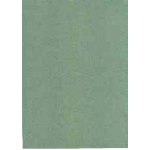 Ecstasy Crafts Cardstock 25 Sheet Package-Green