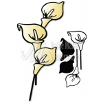 Dee's Distinctively Dies CALLA LILY