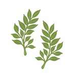 Creative Expressions Sue Wilson Dies - Finishing Touches Collection - Laurel Leaves