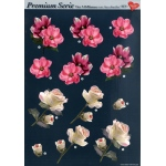 3D Premiumserie, 6 pcs Flowers 07 Cutting Sheets
