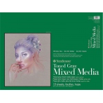 "Strathmore® 400 Series Gray Mixed Media Pad 18"" x 24"": Pad, 15 Sheets, 18"" x 24"", Mixed Media, 184 lb, (model ST462-318), price per 15 Sheets pad"