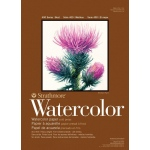 "Strathmore® 400 Series 25"" x 38"" Cold Press Watercolor Sheets: White/Ivory, Sheet, 25 Sheets, 25"" x 38"", Cold Press, 140 lb"