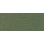 "Canson® Mi-Teintes® 19 x 25 Pastel Sheet Pack Ivy: Green, Sheet, 19"" x 25"", Rough, (model C100511247), price per sheet"