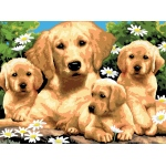"Royal & Langnickel® Painting by Numbers™ 11 1/4 x 15 3/8 Junior Large Set Golden Retriever: 11 1/4"" x 15 3/8"", (model PJL12), price per set"
