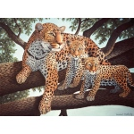 "Royal & Langnickel® Painting by Numbers™ 11 1/4 x 15 3/8 Junior Large Set African Leopard & Cubs: 11 1/4"" x 15 3/8"", (model PJL24), price per set"